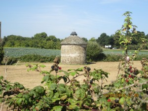 St Coulomb (16)