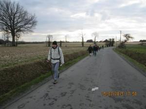 Piré-sur-Seiche (29)