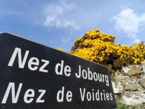 Pointe du Nez de Jobourg, culmine à 126m d'altitude. Ce sont les falaises les plus hautes d'Europe et offre un point de vue unique sur les îles Anglo-Normandes (hors brume bien sur!)