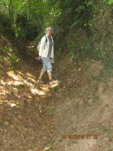 Trans la Forêt (31)