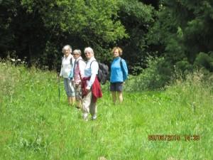 Trans la Forêt (49)