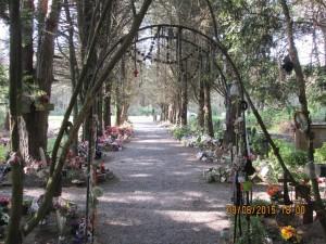 Trans la Forêt (76)