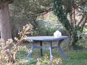 Ie chat blanc est de la fête aussi !