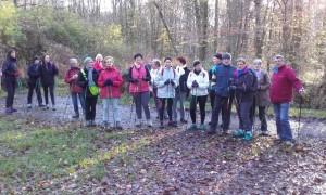 Le groupe à Mi-Forêt