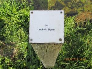 Dingé (14)