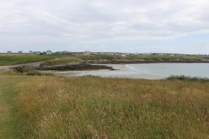 Ouessant Yves (102)