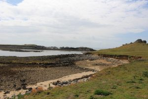 Ouessant Yves (111)