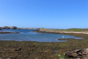 Ouessant Yves (112)