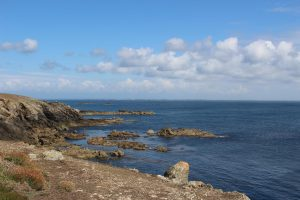 Ouessant Yves (113)