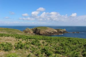 Ouessant Yves (121)