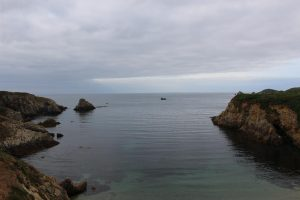 Ouessant Yves (146)