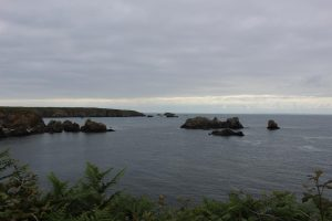 Ouessant Yves (156)