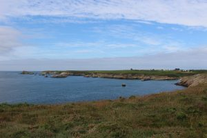 Ouessant Yves (173)