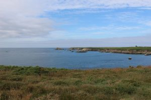 Ouessant Yves (174)