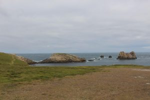 Ouessant Yves (192)
