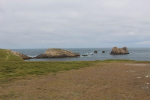 Ouessant Yves (193)