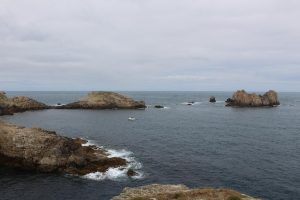 Ouessant Yves (200)