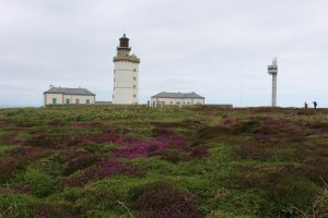 Ouessant Yves (215)
