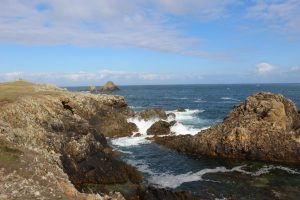 Ouessant Yves (33)