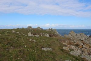 Ouessant Yves (44)
