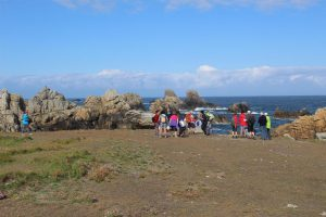 Ouessant Yves (53)