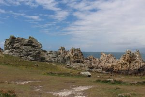 Ouessant Yves (81)