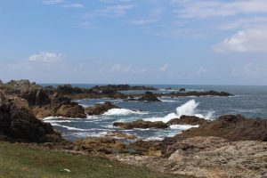 Ouessant Yves (91)