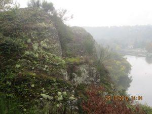 mousses et lichens sur le schiste