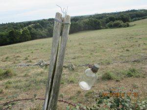 ingénieux système pour remplacer la protection électrique de la clôture!