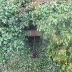 Un puits bien camouflé