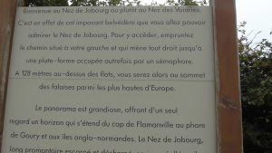 Nez de Jobourg 19