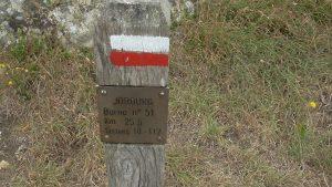 Nez de Jobourg 28