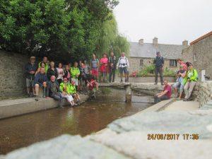 Cotentin (57)