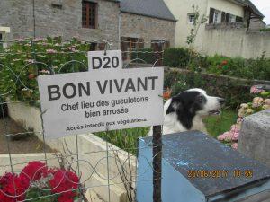 Cotentin (96)