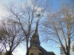 son église avec son fin clocher du XVII e siècle.