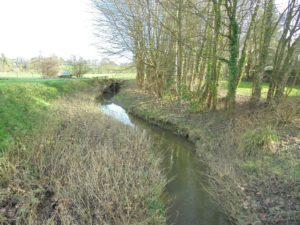 le ruisseau l'Ile