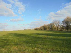 campagne et ciel d'hiver! c'est beau !!