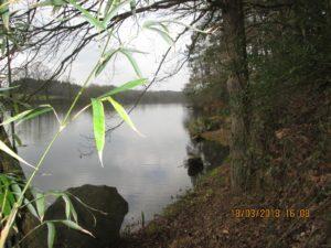 L'étang de Baron